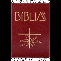 Bíblia de Aparecida - Média Zíper Marrom
