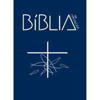 Bíblia de Aparecida - Bolso cristal