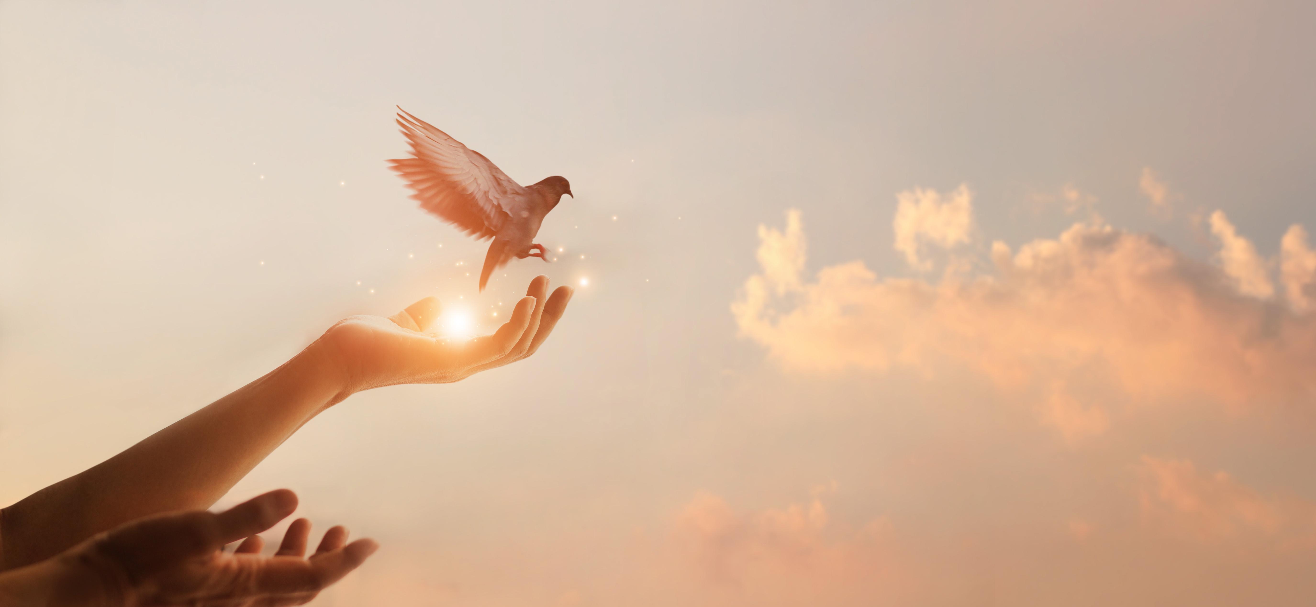Imagem espírito santo sendo elevado aos céus